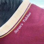 Paardendeken borduuren halslijn